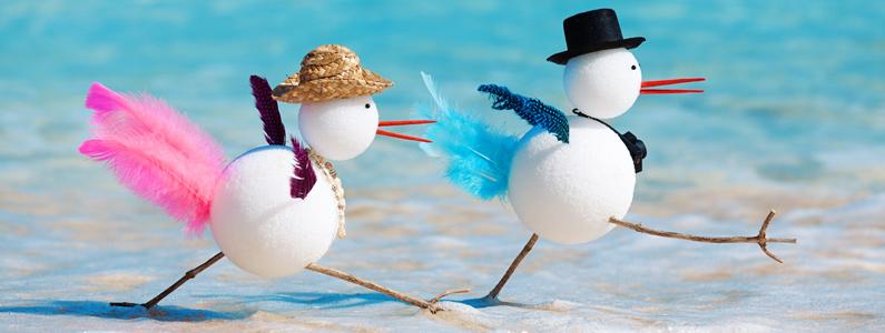 snowbirds estate planning tips